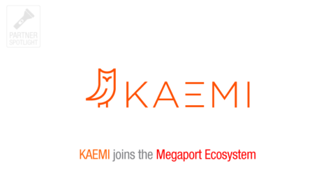 Partner Spotlight: KAEMI
